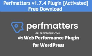 Perfmatters v1.7.4 - WordPress Performance plugin Free Download